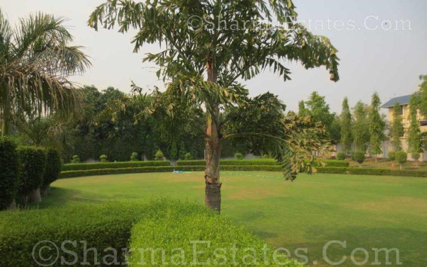 Farm House for Sale Cassia Avenue Westend Greens Rangpuri New Delhi